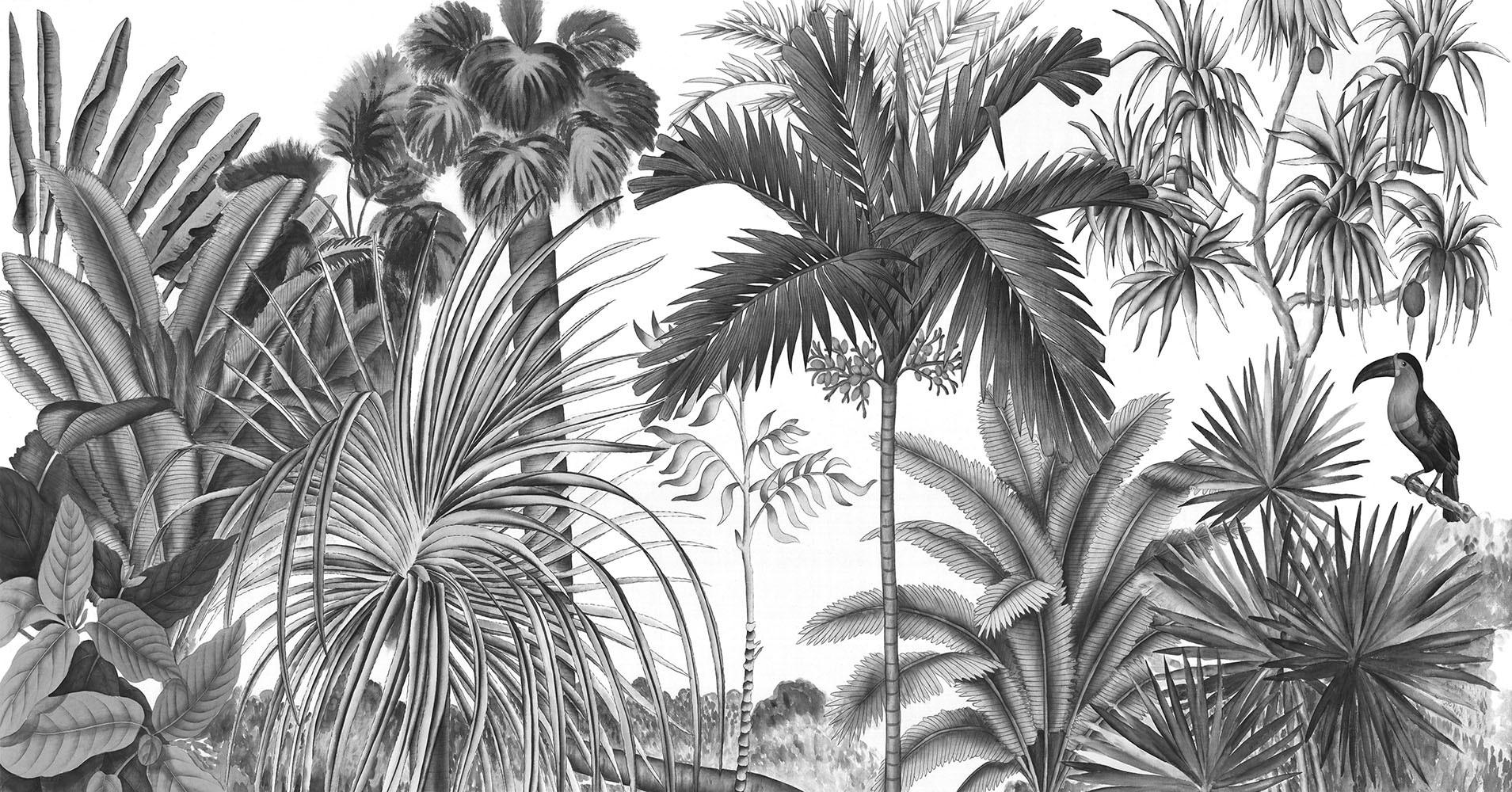 100 Fantastique Conseils Papier Peint Palmier Noir Et Blanc
