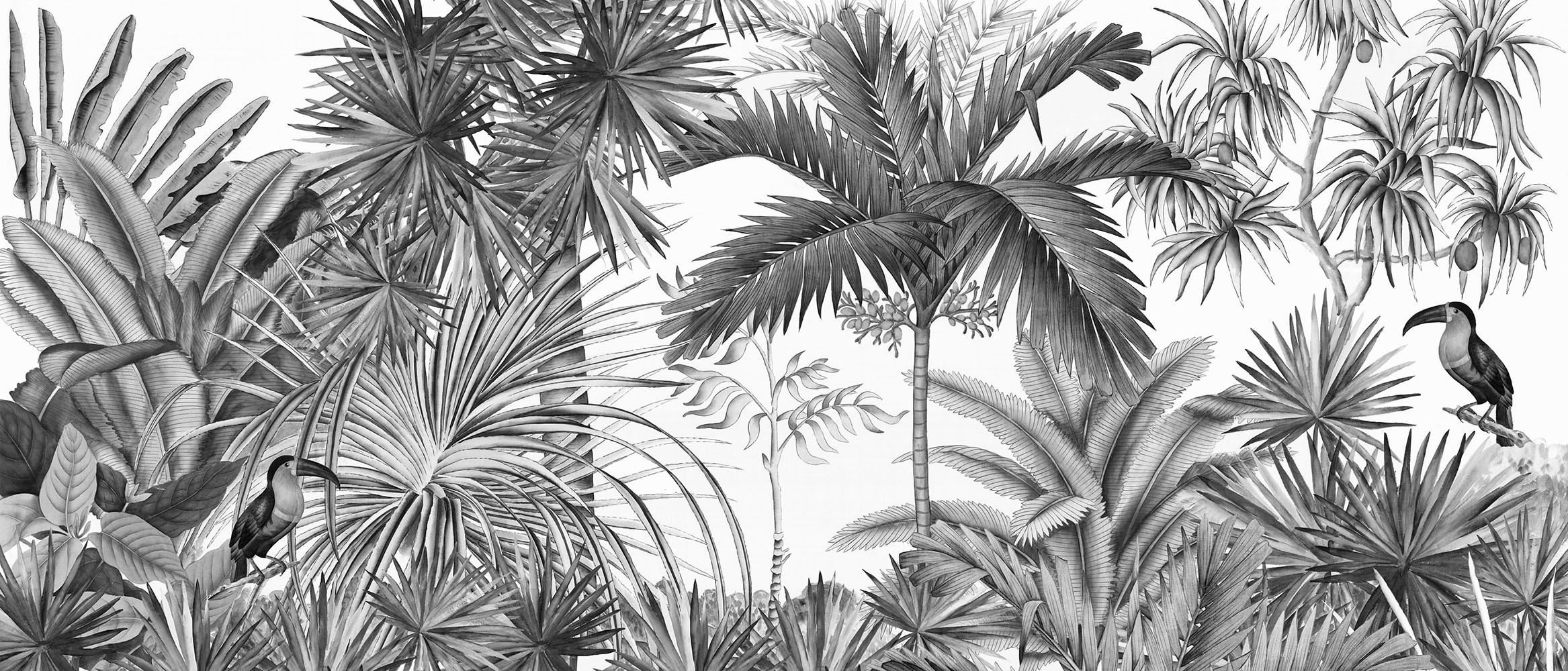 Papier Peint Panoramique Ananbo Jarawa Noir Blanc