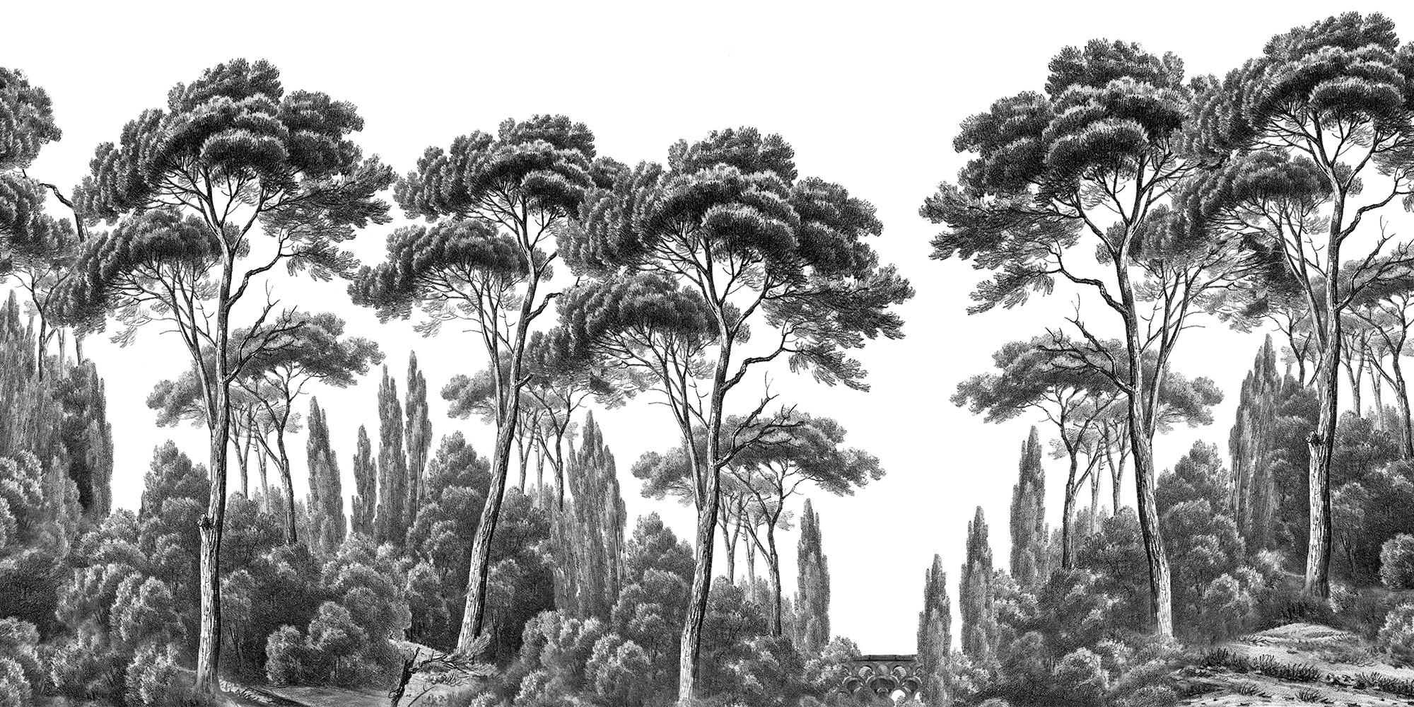 Papier Peint Noir Et Blanc Graphique papier peint panoramique ananbô pins et cyprès noir et blanc